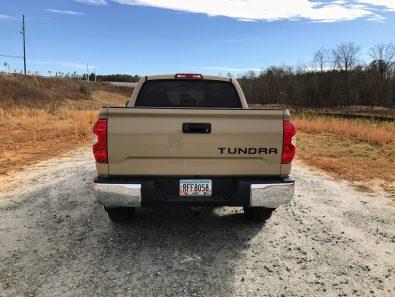 Tundra back
