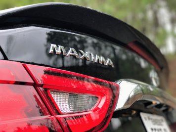 Maxima badge