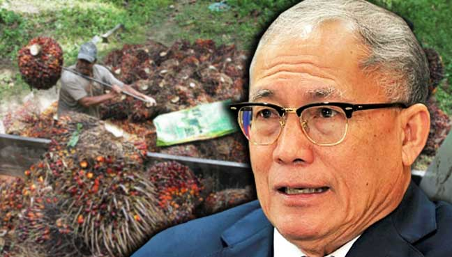 Richard-Riot-Jaem-foreign-workers-palm-oil-malaysia