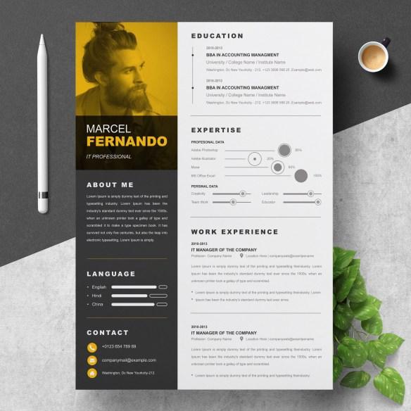 Web Designer | Freelancer | Graphics Designer | Content Writer Resume Template