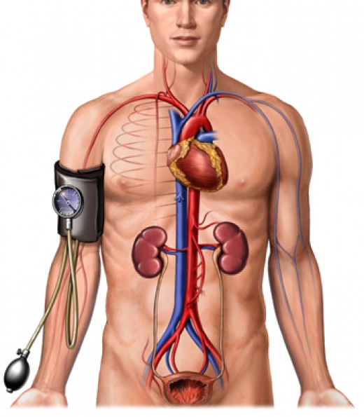 Blood pressure consists of two readings, a systolic & diastolic measurement.