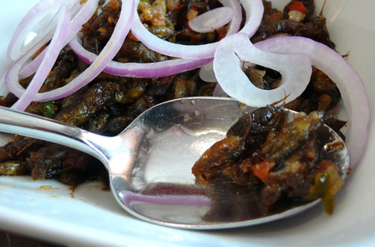 A dish with crickets is one of the favorite delicacies of people in Pampanga, Pangasinan and other provinces in the country.