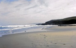 Cool sand left by the waters retreat: a beach on the Transkei Wild Coast