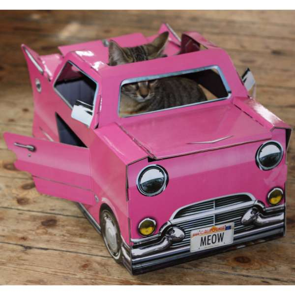 Cat Play Houses Pink Cadillac IWOOT
