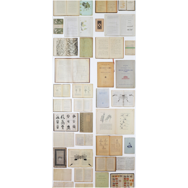 NLXL Biblioteca Wallpaper by Ekaterina Panikanova (For Use with EKA 01-04)