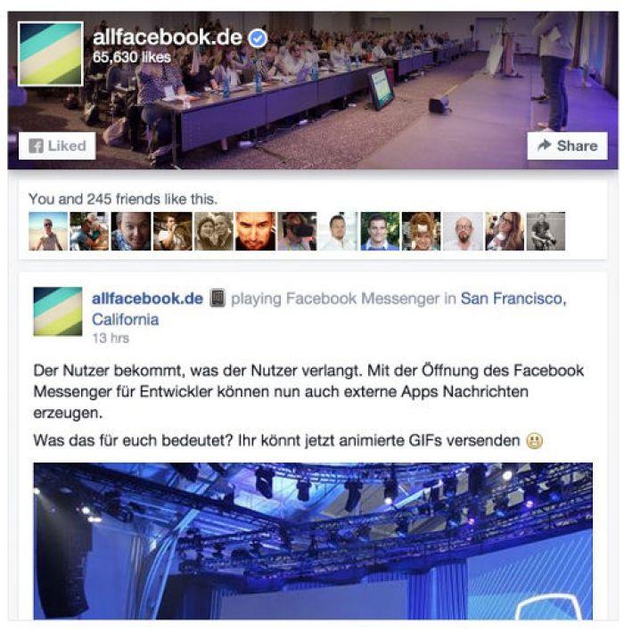 Facebook_page-plugin-2