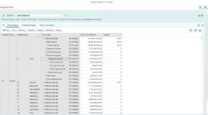 S/4HANA Market Segment Actuals App