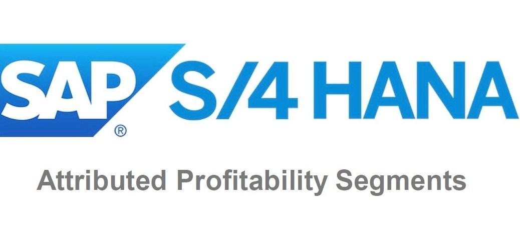 Attributed Profitability Segment Header