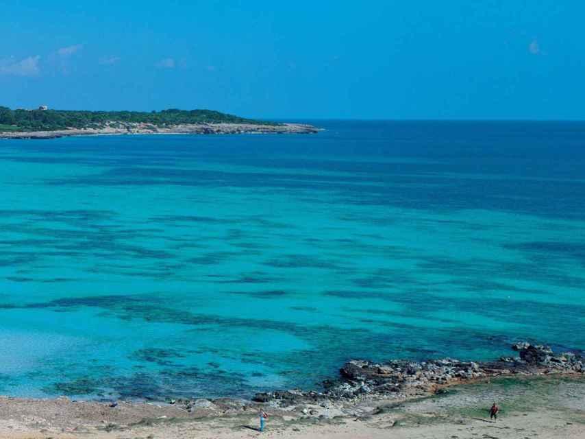 Playa de sa Coma, en Sant Llorens des Cardassar.