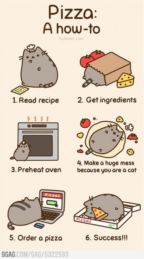 9gag A How To Pizza Cat Cute Image 581188 On