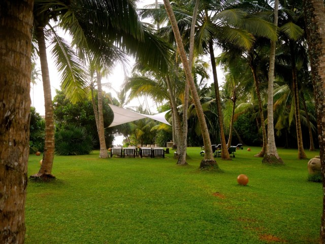 SriLanka OWF-Guesthouse Garden