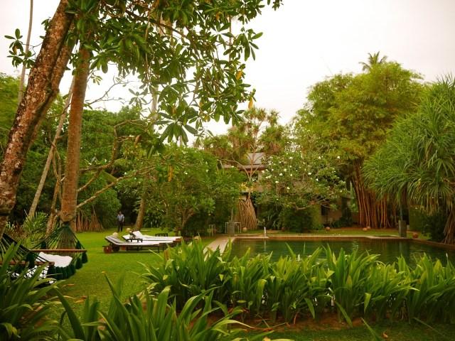 SriLanka OWF-Guesthouse Pool