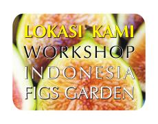 Klik untuk mengetahui alamat & Denah lokasi Pohon Buah Tin Jakarta