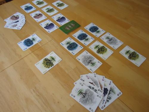 Arboretum - 2 Player Game