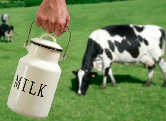 fissac _ lácteos desnatados