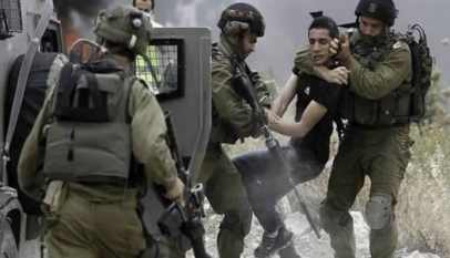 الاحتلال يعتقل 15 فلسطينيا من الضفة المحتلة
