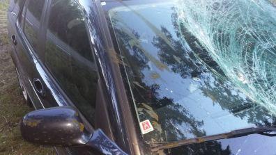 Aber der Saab hat Leben gerettet