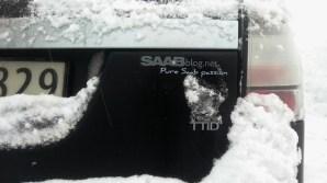 Passione pura Saab. Sì, che altro?
