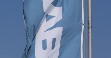 Saab Fahne im Wind