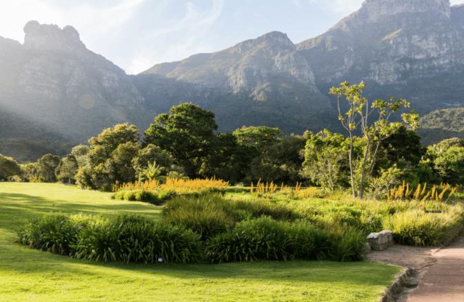 Kirstenbosch through the lens of an N8