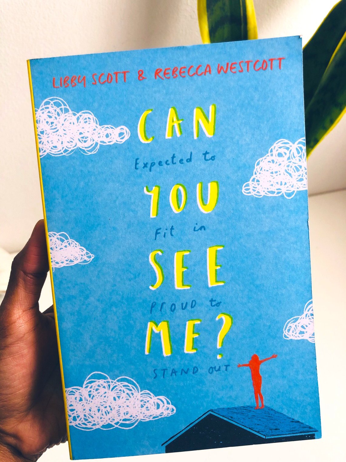 Can You See Me? Written by Libby Scott & Rebecca Westcott