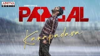 Kanapadava Song Lyrics - Paagal (2021)