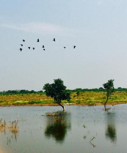 ఫోటో: గంగా రెడ్డి