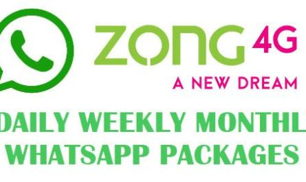 Zong WhatsApp Packages Daily, Weekly, Monthly
