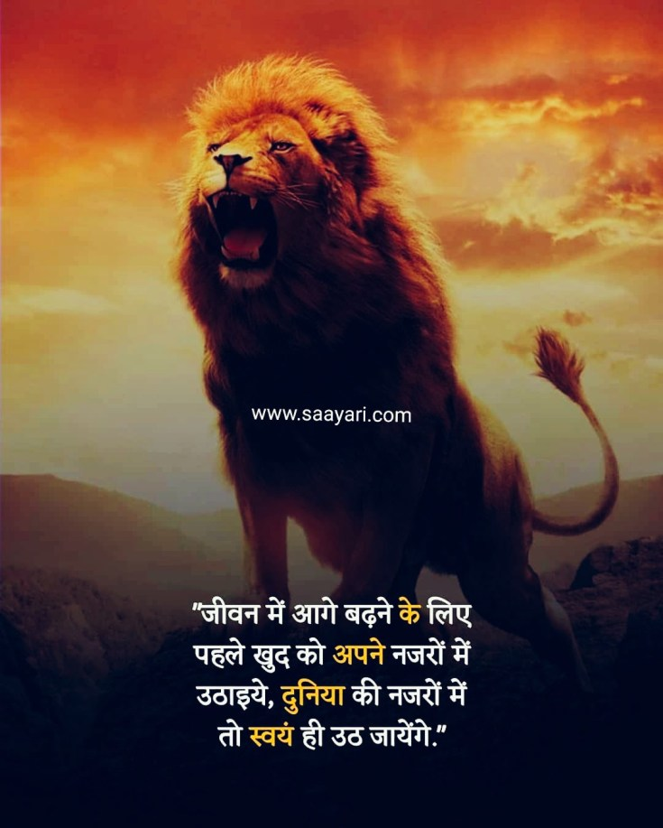 My Life My Rules Quotes