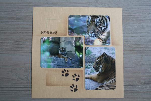 Zoo de Beauval – Tigres