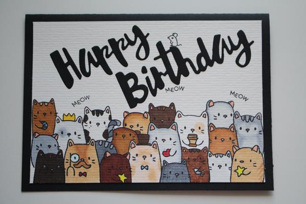 Un anniversaire avec nos amis les chats