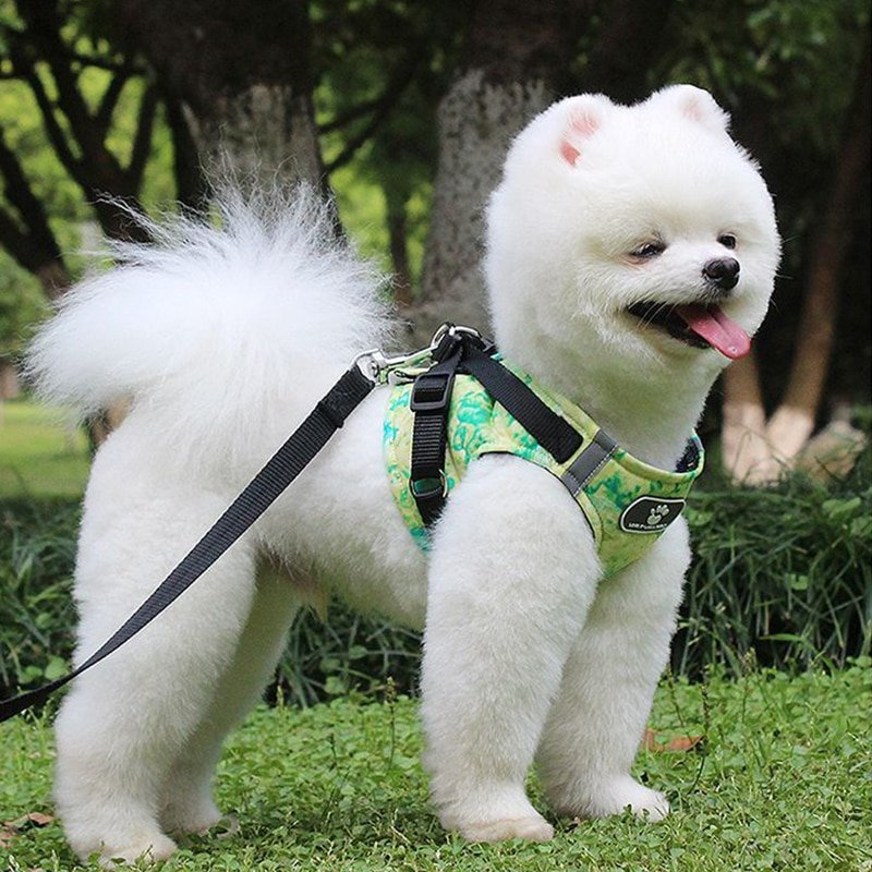 1Pc Comfortable Dog Harness Vest with Leash