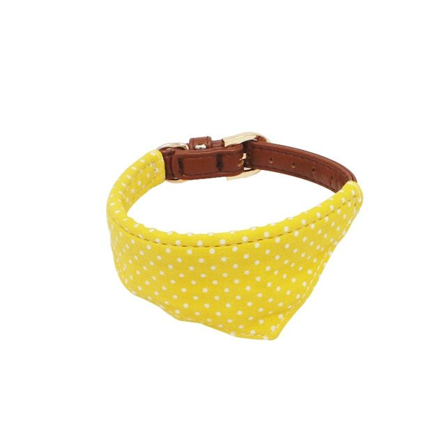 1Pc Quality Small Dog Collar or Leash