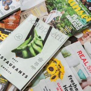 Conjunto de catalogos y revistas corprativas