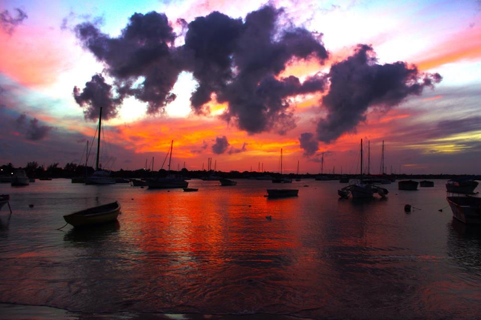 My Mauritian Adventure