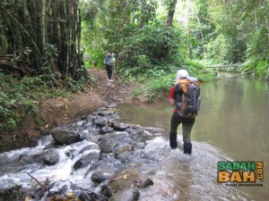 One of the easy river crossings on the Salt Trail Jungle Trek, Crocker Range
