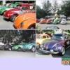 VW Bugs (Beatles) galore - As seen on www.sabah.org.my/kinabalu_vw_club