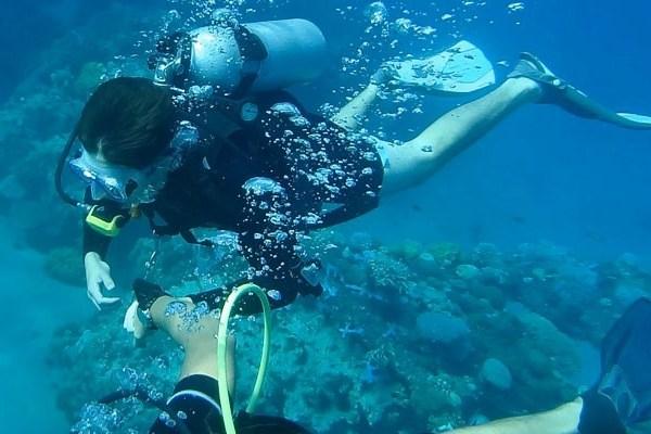 Book Discover Scuba Diving in Kota Kinabalu, Sabah