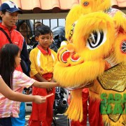 Lion costumes for Lion Dances