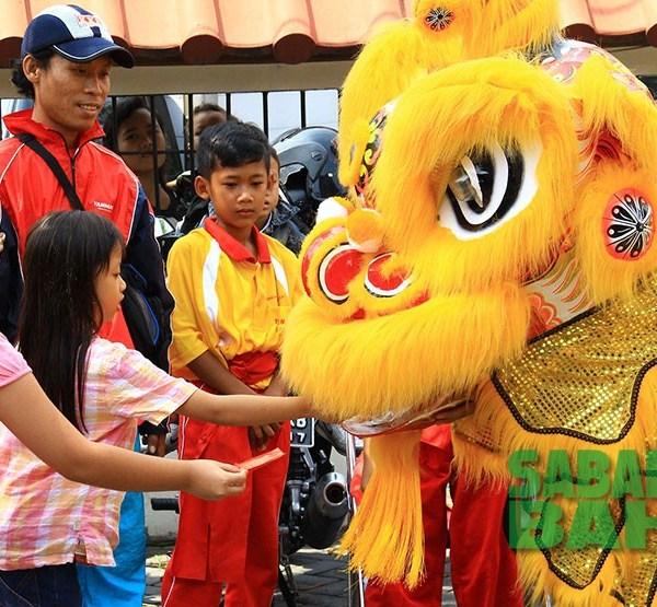 Lion costumes for Lion Dances