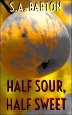 HalfSourCover