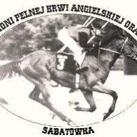 Stadnina koni Sabatowka