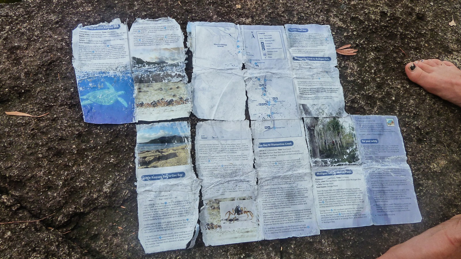 a photo of a torn hinchinbrook island hiking map