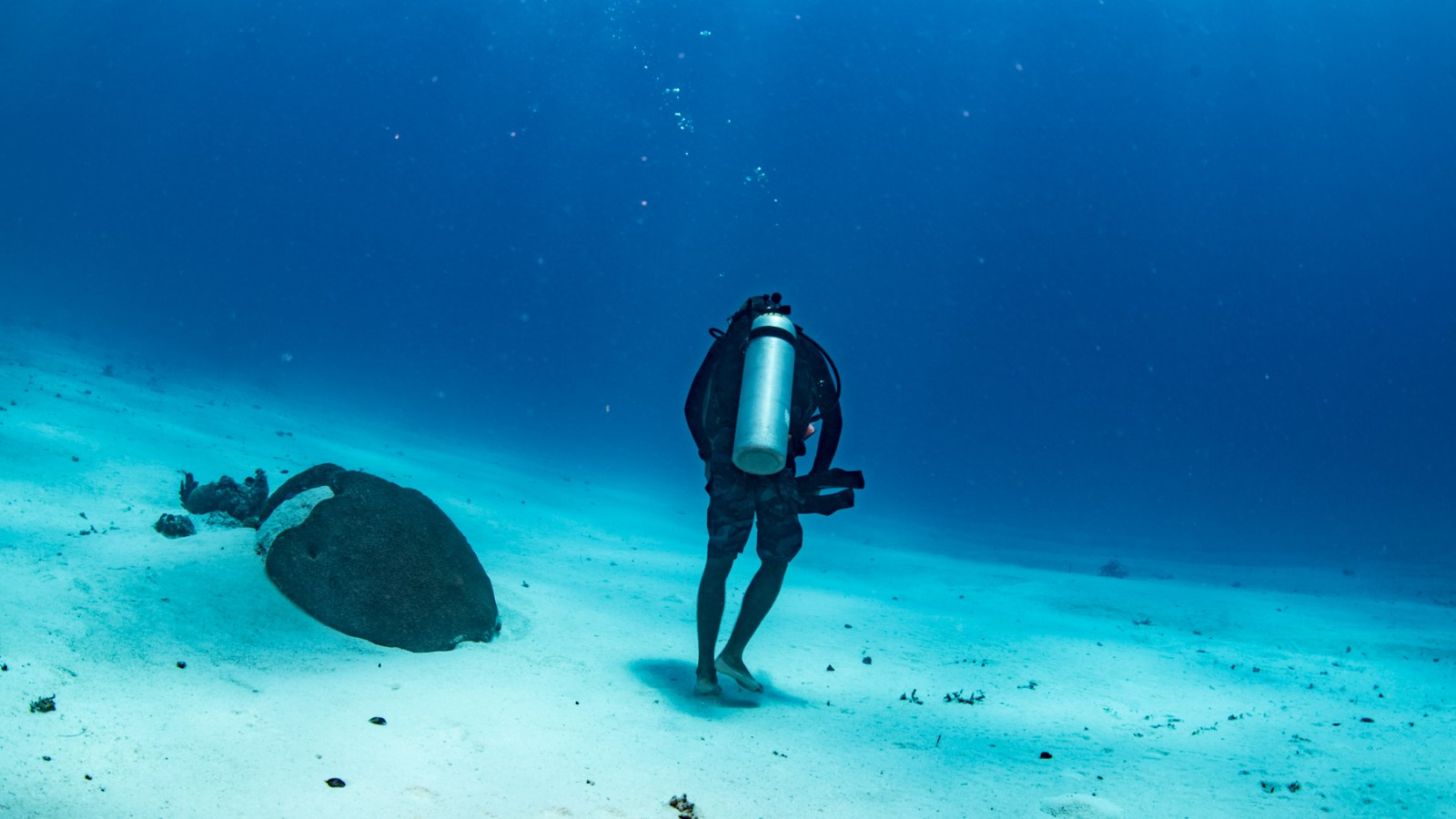 a image by sabbalot photography of a scuba diver walking on the sea floor in palau.