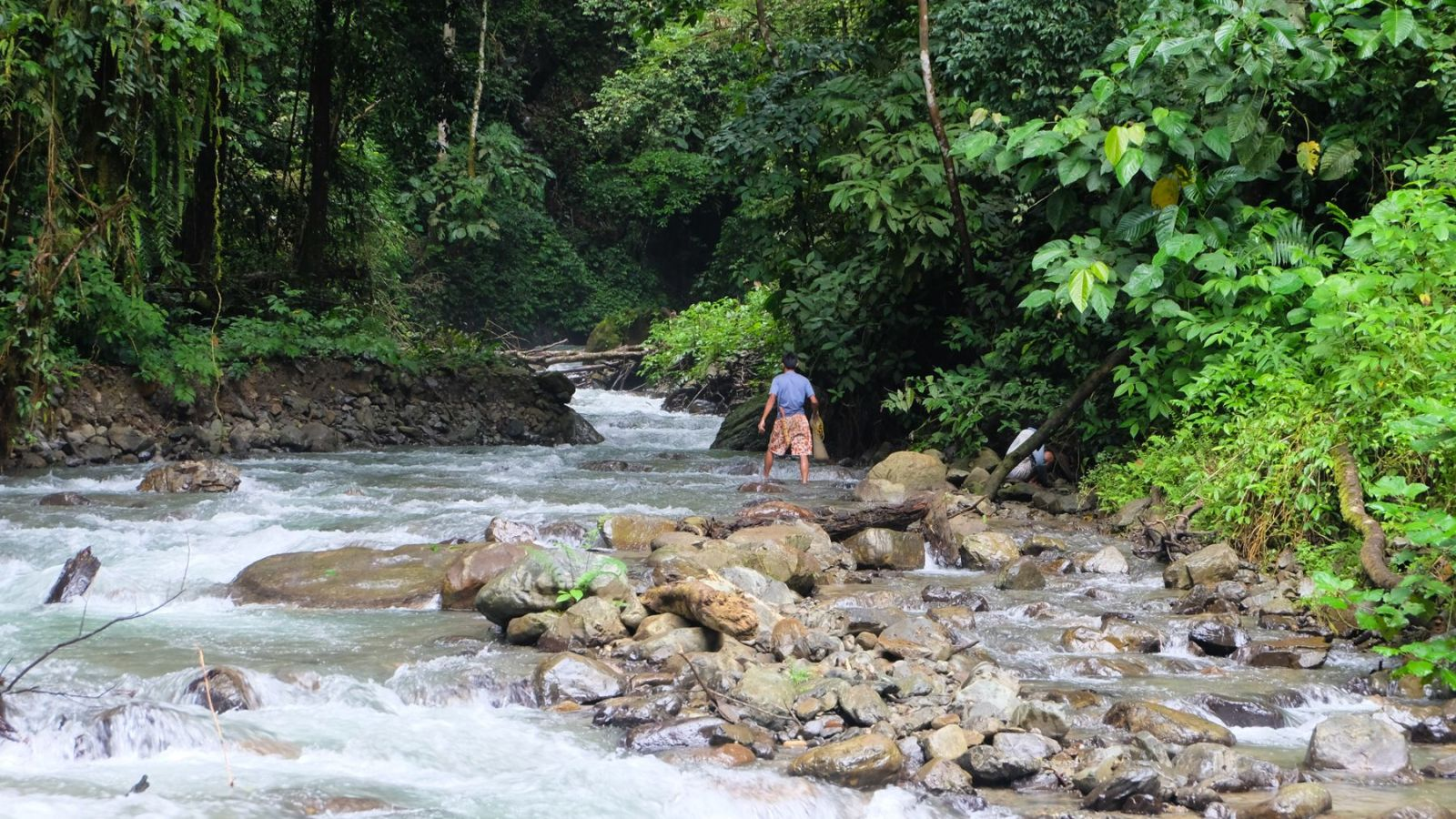 a photo of a person catching fish in gunung leuser national park.