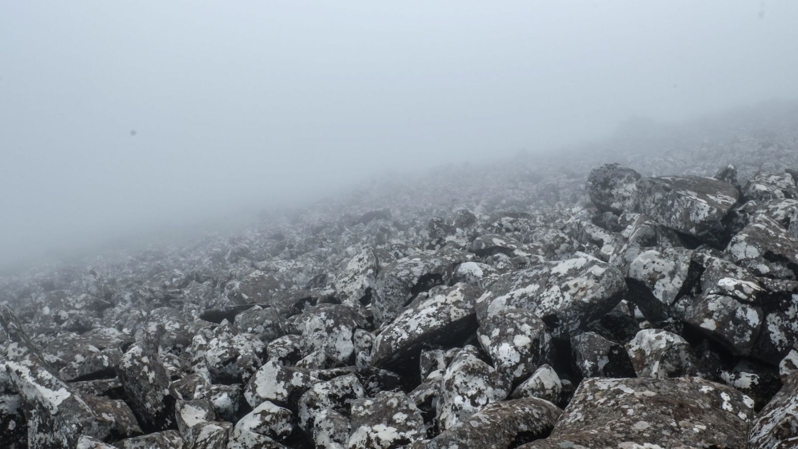 a photo of rocks covered in fog on the amathole trail.