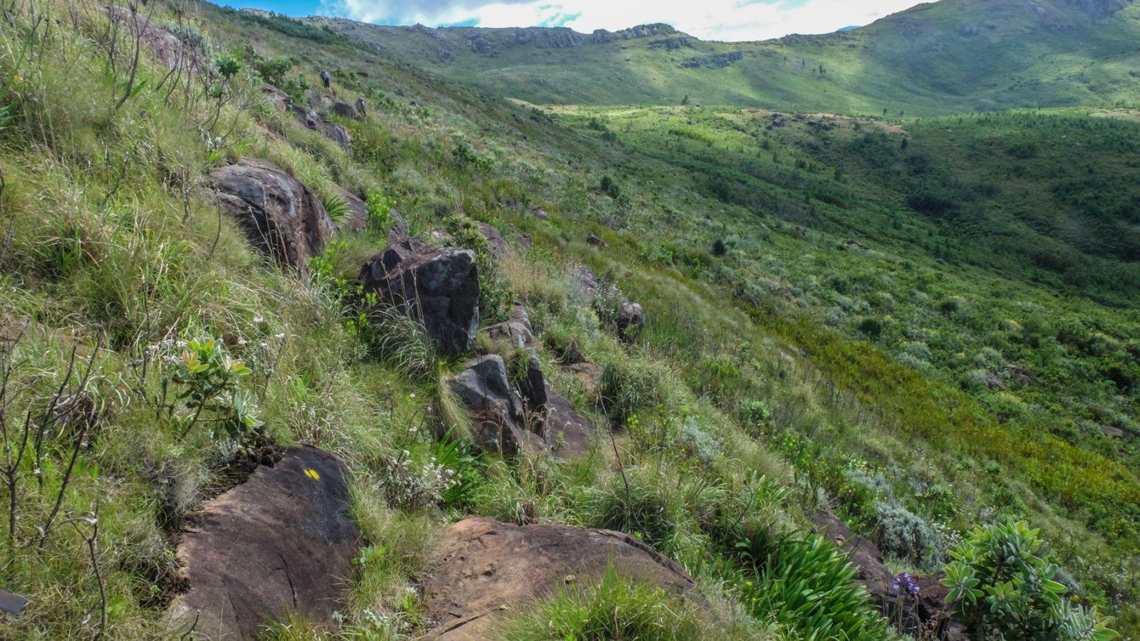 a photo of the hogsback mountain on the amathole trail.