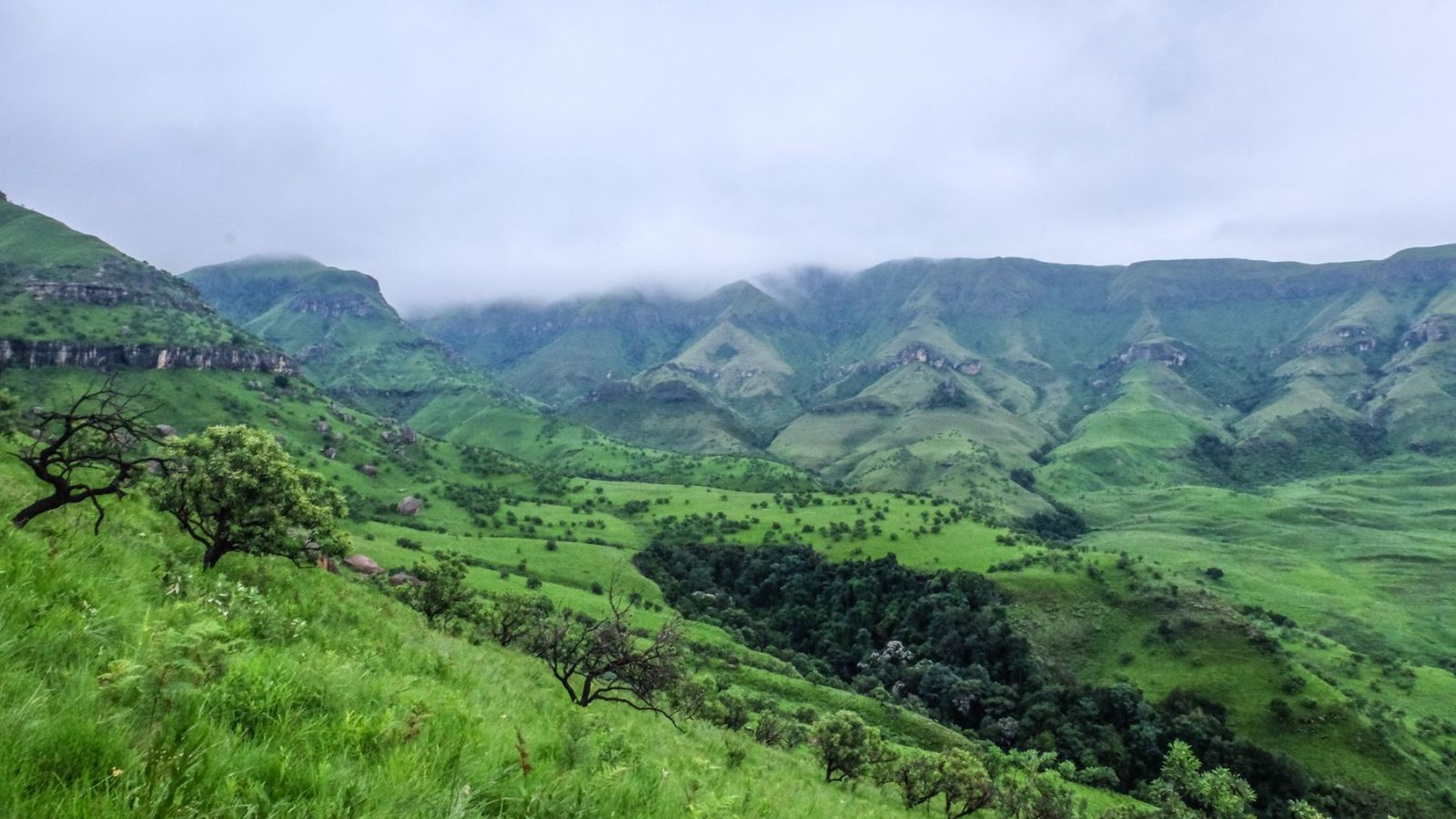 photo of a green valley in the drakensberg mountains