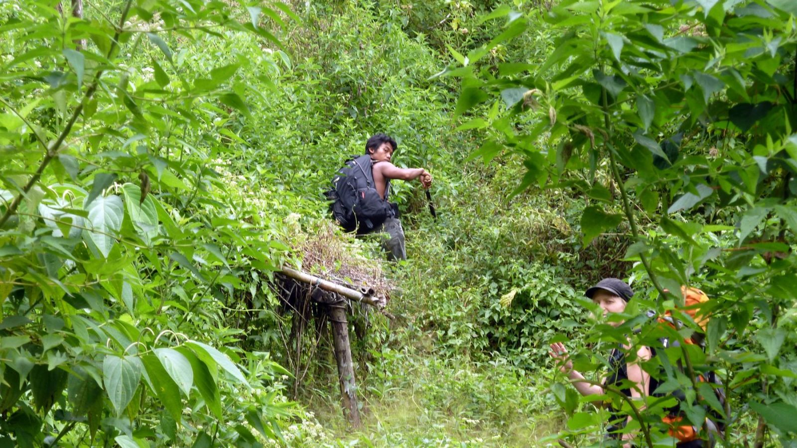 a photo of a hiking guide clearing the forest with a machete in gunung leuser national park.