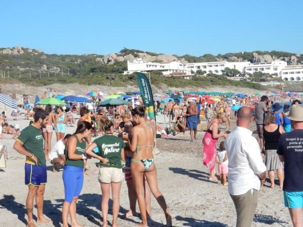 Beach at Capo Testa
